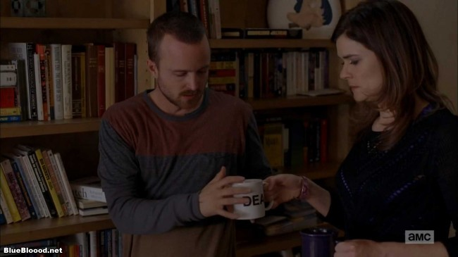 breaking bad aaron paul dea coffee mug marie schrader