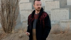 Breaking Bad Confessions S5 Ep11