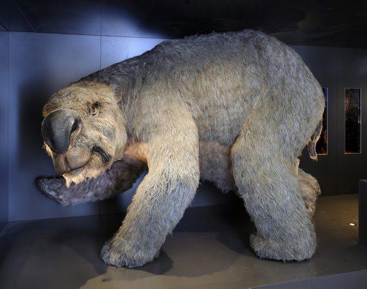 diprotodon giant wombat