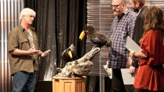 Immortalized on AMC, Competitive Taxidermy Reality Show