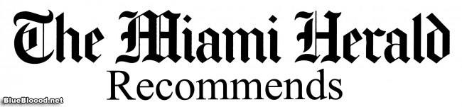 BLT in The Miami Herald, Librarians are Awesome