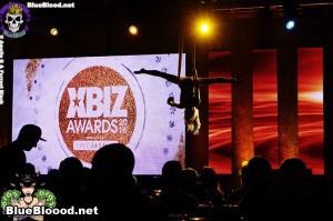XBiz Awards 2016
