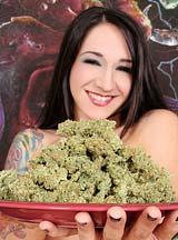420 Superna Weed