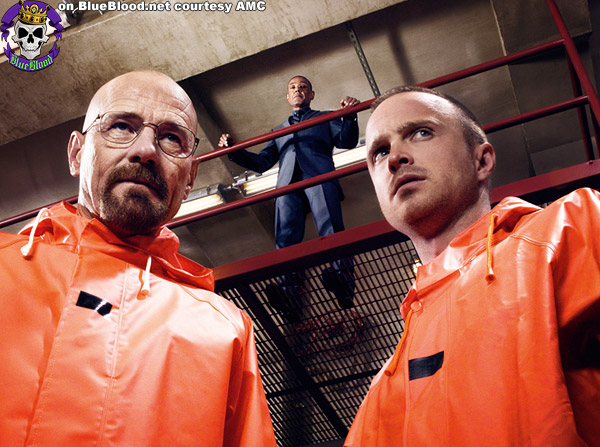 Blue Blood Breaking Bad Season 4
