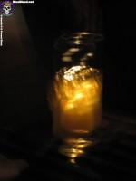 Blue Blood DC East Coast OG http://www.blueblood.net/gallery/dc-east-coast-og/th_dc-ecog3208.jpg