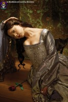 Blue Blood Tudors Showtime Promo Paintings http://www.blueblood.net/gallery/tudors-showtime/th_tudors-promo-011.jpg